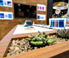 Trade Show exhibit design - X-Doria International - alt image 3